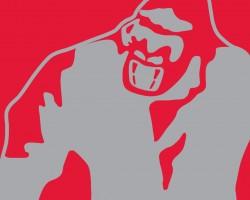 GorillaWear_HS_uitgelicht